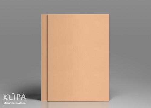 Carton colorat piersica A4 - 20 coli