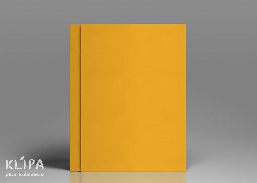 Carton colorat A4 portocaliu deschis 20 coli