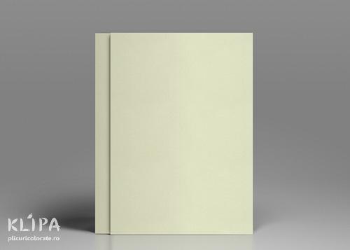 Carton colorat A4 ivoire 20 coli