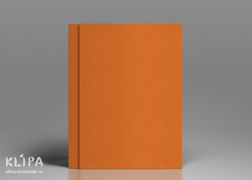 Carton colorat portocaliu A4 - 20 coli