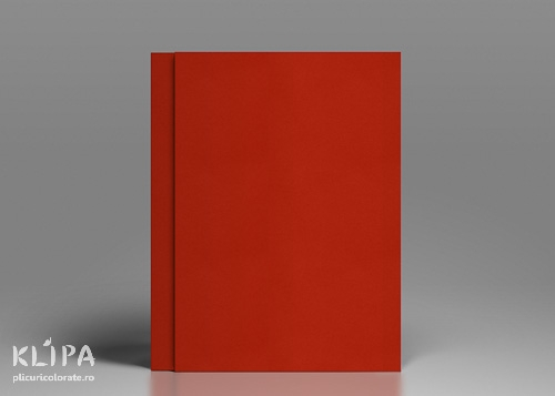 Carton colorat A4 rosu 20 coli