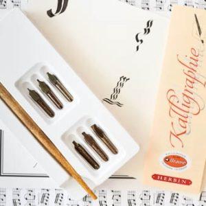 Set de 6 penite pentru caligrafie